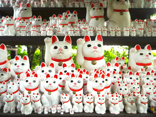 Story Behind of Lucky Cat (Maneki Neko)