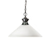 Z-Lite Shark 100701GM-AMO14 Pendant Light