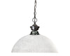 Z-Lite Shark 100701GM-DWL14 Pendant Light