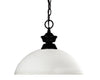 Z-Lite Shark/Windsor 100701MB-DMO14 Pendant Light
