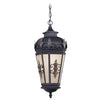 Livex Lighting Berkshire Bronze Outdoor Chain Lantern  2195-07