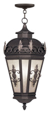 Livex Lighting Berkshire Bronze Outdoor Chain Lantern  2199-07
