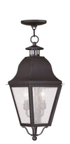 Livex Lighting Amwell Bronze Outdoor Chain Lantern  2546-07