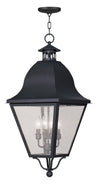 Livex Lighting Amwell Black Outdoor Chain Lantern  2547-04