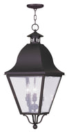 Livex Lighting Amwell Bronze Outdoor Chain Lantern  2547-07