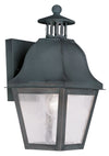 Livex Lighting Amwell Charcoal Outdoor Wall Lantern 2550-61