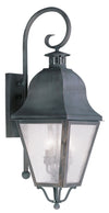 Livex Lighting Amwell Charcoal Outdoor Wall Lantern 2555-61