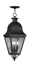 Livex Lighting Amwell Black Outdoor Chain Lantern  2557-04