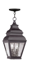 Livex Lighting Exeter Bronze Outdoor Chain Lantern  2604-07