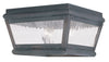 Livex Lighting Exeter Charcoal Outdoor Ceiling Mount 2611-61
