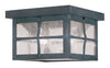 Livex Lighting Brighton Hammered Charcoal Finish Outdoor Ceiling Mount 2688-61