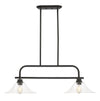 Z-Lite Annora 428-2B-OB Island/Billiard Light