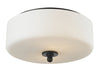 Z-Lite Cardinal 414F2 Flush Mount Light