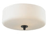 Z-Lite Cardinal 414F3 Flush Mount Light