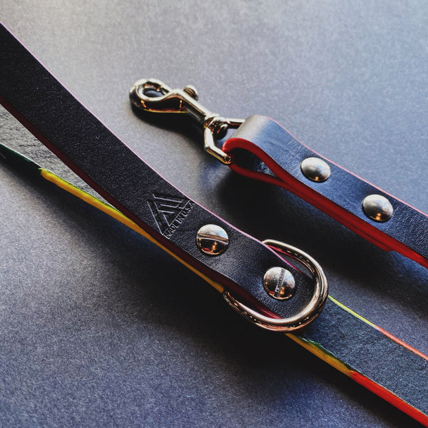 Last State Leather Pride Leash