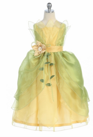 Princess Tiana Disney Costume Dress Inspired
