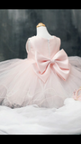 Princess Tutu Dress - Little Livey - 2