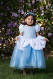Princess Dress up ballgown, baby blue Cinderella inspired, costume dress toddler sizes  2-10 available disney princess party dress outfit