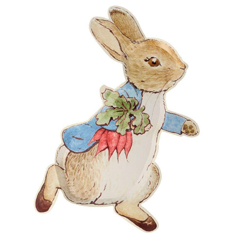 Shaped Plates - Peter Rabbit Party