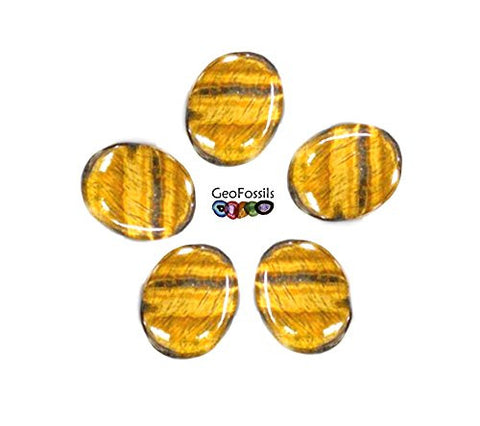 Gold Tigers Eye Oval Palmstone Cabochon 30-40mm Single piece