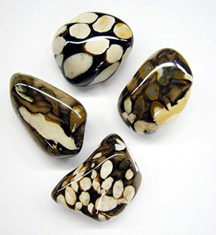 Peanut Wood Jasper Tumble Stone 20-25mm (20)