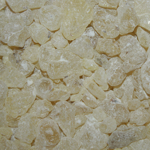 Dammar Gum - Magical Herbs for Ritual, Spells & Incense Making (25g)