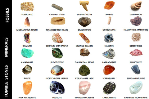 30 Different Minerals, Fossils and Tumble Stone Collection