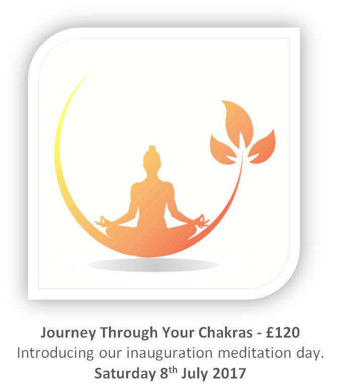 Journey through your Chakra's