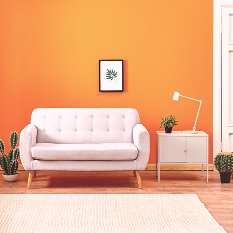 Colours Eco Paint | Spiced Marmalade No. 51 | Bright Orange
