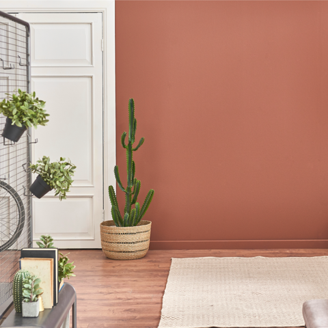 Terrapotta No. 67 | Terracotta Eco Paint at Victory Colours