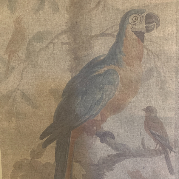 Wall Hanging Scroll, Print on Fabric Unique Vintage Parrot Blue Birdlife up close of blue parrot
