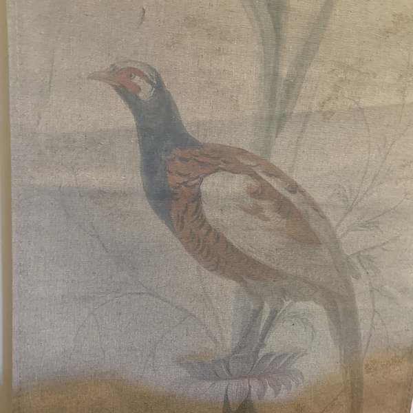 Wall Hanging Scroll, Print on Fabric Unique Vintage Pheasant Birdlife up close pheasant detail