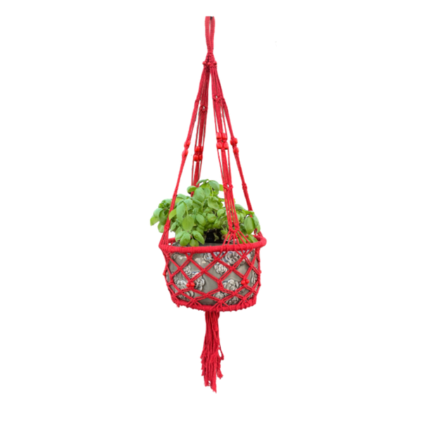 macrame pot plant hanger in Raspberry