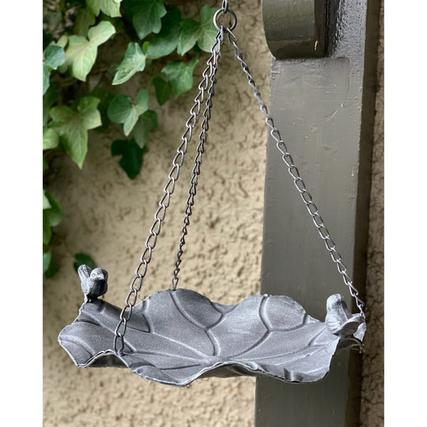 Hanging bird feeder with birds on the edge