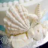Big Sea Shell Mold
