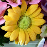 Sunflower, Gerbera/ Daisy Cutter