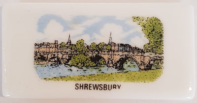 Shrewsbury Small China Fridge Magnet