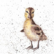 Just Hatched Greetings Card - Wrendale Designs