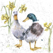 Ducks and Daffs Greetings Card - Wrendale Designs