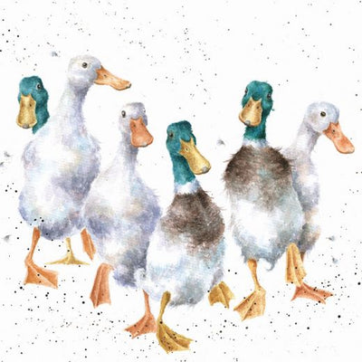 Quackers Greetings Card - Wrendale Designs