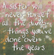 A sister will never forget all the dumb things