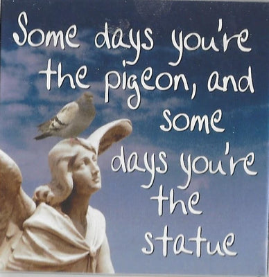 Some days you're the pigeon