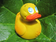Big Latex Rubber Duck From Lanco Ducks