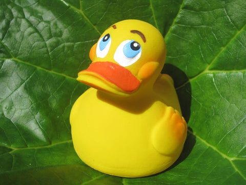 Classic Latex Rubber Duck From Lanco Ducks
