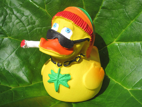 Rasta Latex Rubber Duck From Lanco Ducks