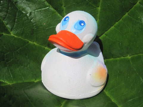 Ice Latex Rubber Duck From Lanco Ducks