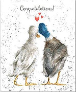 Duck Love Congratulations Greetings Card - Wrendale Designs