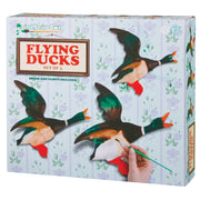 Paint Your Own Flying Ducks ZZ