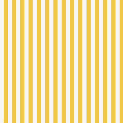 1  Gift Wrap Roll - Yellow Stripes