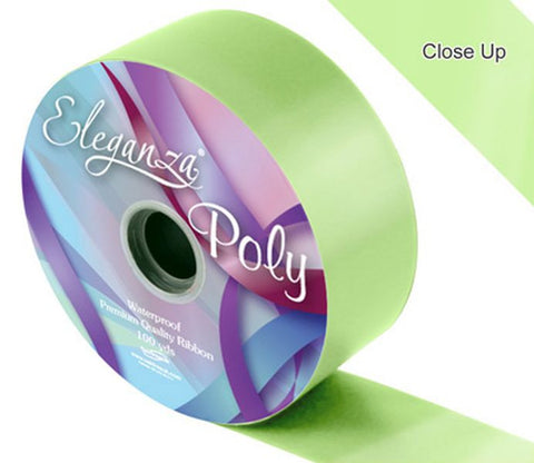 50mm Poly Ribbon - Mint No.13 by Eleganza - 91m (100yds)